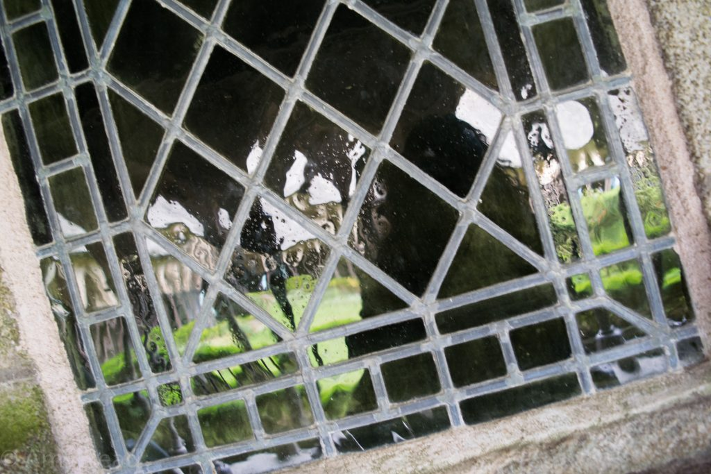 autoportrait cloister garden